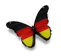 Schmetterling Deutschland